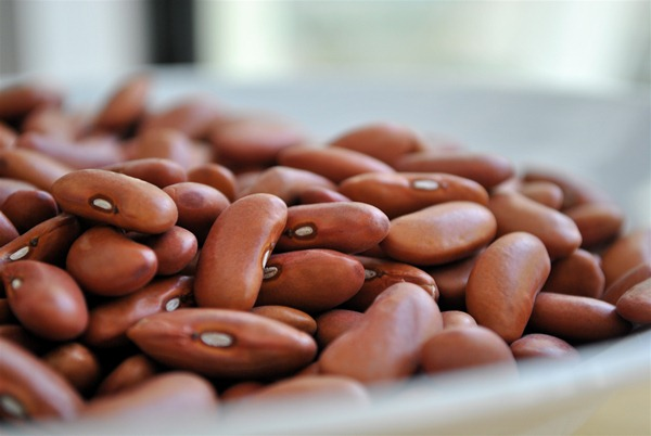 Dried Red Beans
